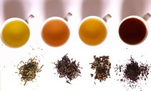 Tea 101 - Understand tea and the different kinds of loose tea